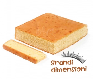 Pan di Spagna classico